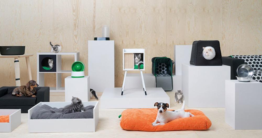 Le confort des animaux de compagnie et des meubles sur mesure