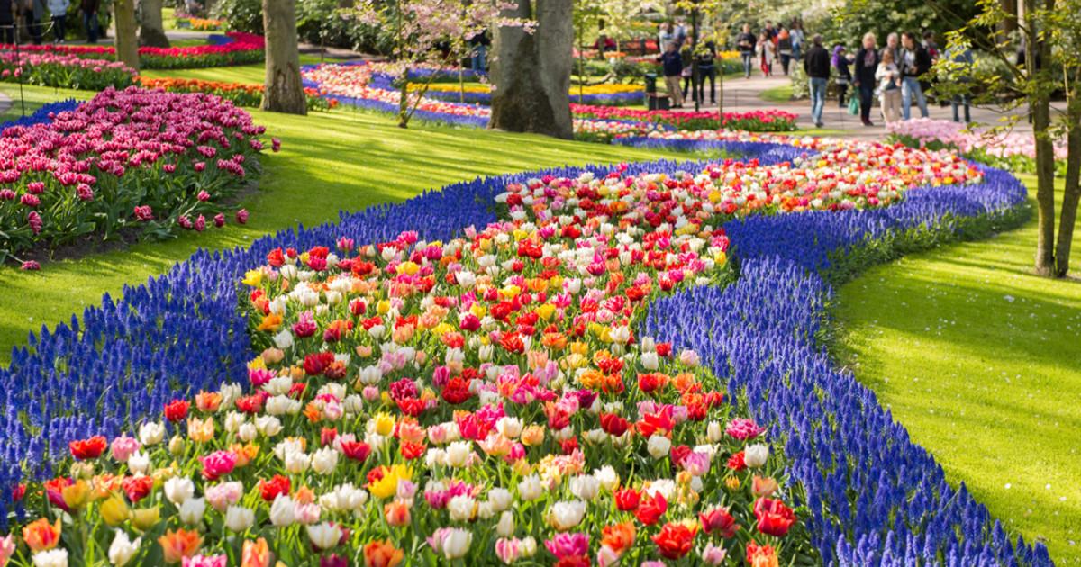 Keukenhof, le plus beau parc floral au monde!