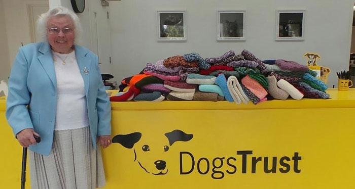 Maisie Green tricote pour les chiens SDF