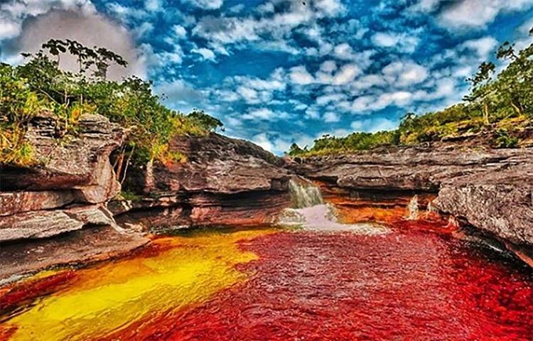 LeCaño Cristales, une rivière pleine de couleurs