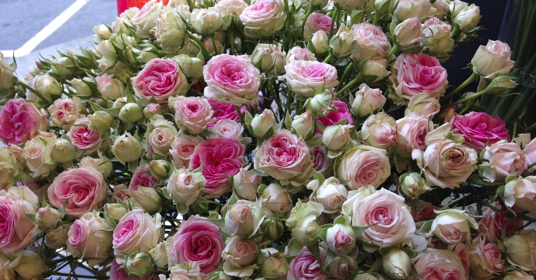 Des bouquets de fleurs