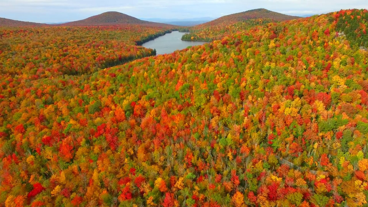 Groton State Forest, un paradis