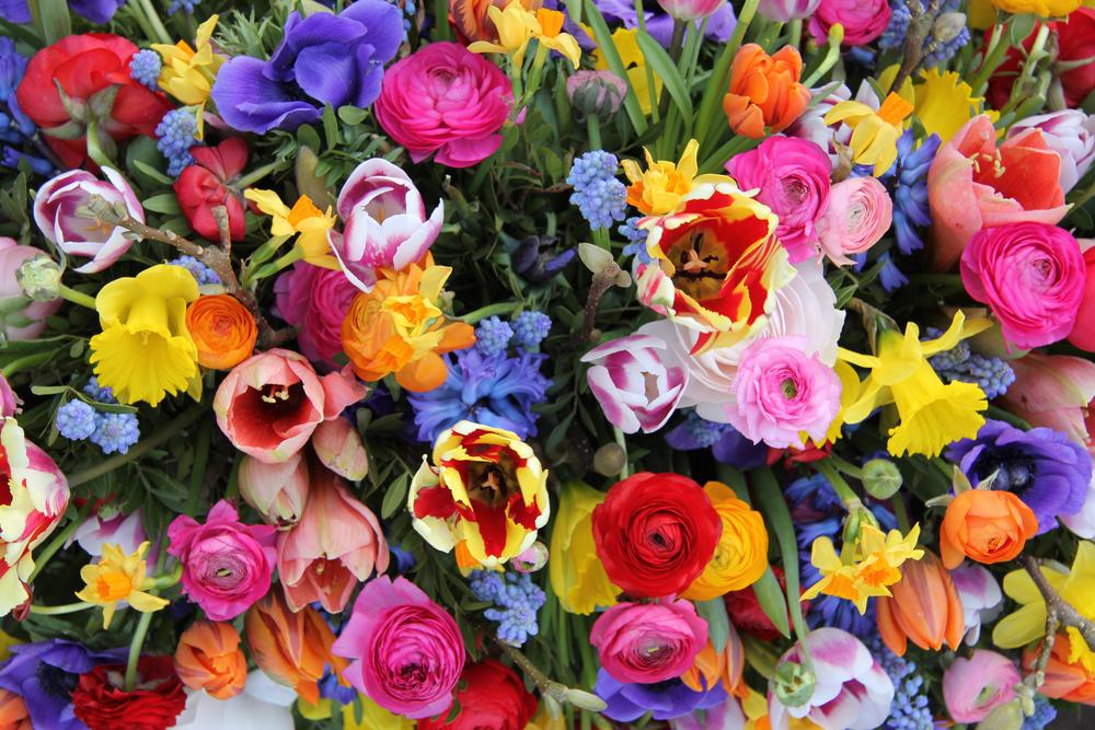 Un printemps tout en fleurs, à découvrir d'urgence!