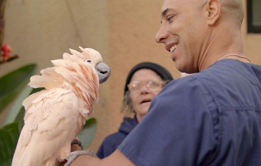 Un vétérinaire au grand cœur aide les SDF