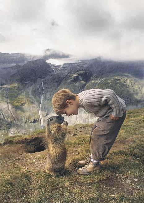 Un enfant unique! Il est ami avec les marmottes!
