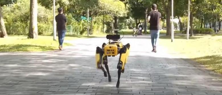 Un robot chien au secours pour lutter contre le coronavirus