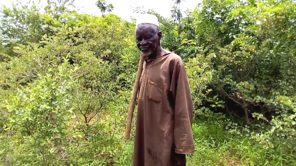 Yacouba Sawadogo, l'homme qui stoppa le désert du Sahel