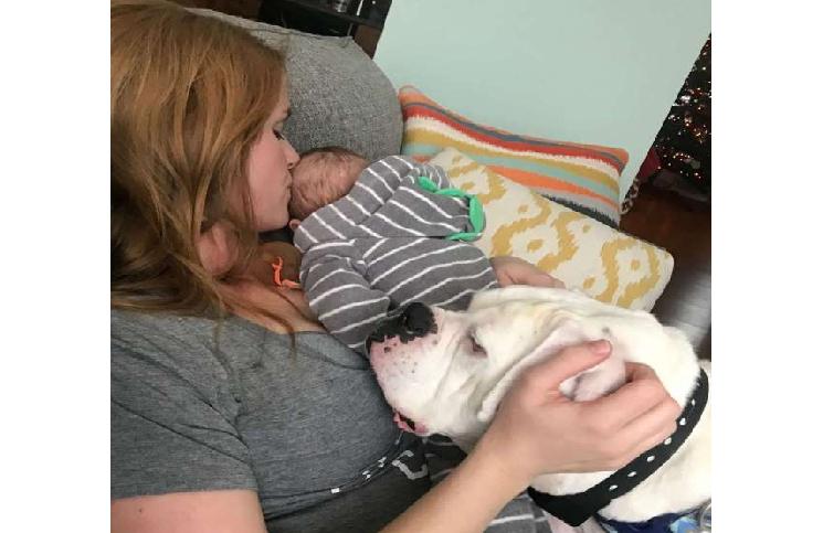 Un bébé et son chien, amis et complices
