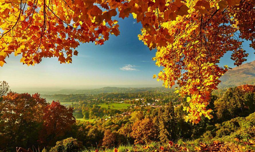 Un automne plein de couleurs (Jolies photos)