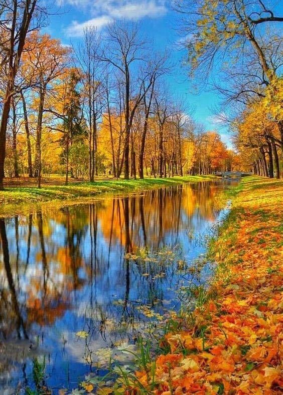 Un automne plein de couleurs pour les amoureux de la nature